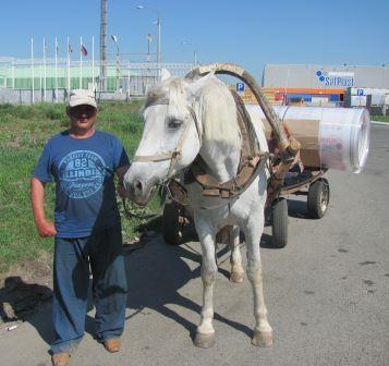 Сотовому поликарбонату Актуаль! доверяют дачники и фермеры